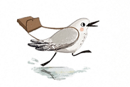 SEA%20BIRDS%20FUNNY%20CHARACTER%20PRINT%