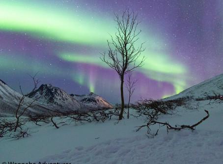 Winter Arctic Adventure in Norway (Part 1)