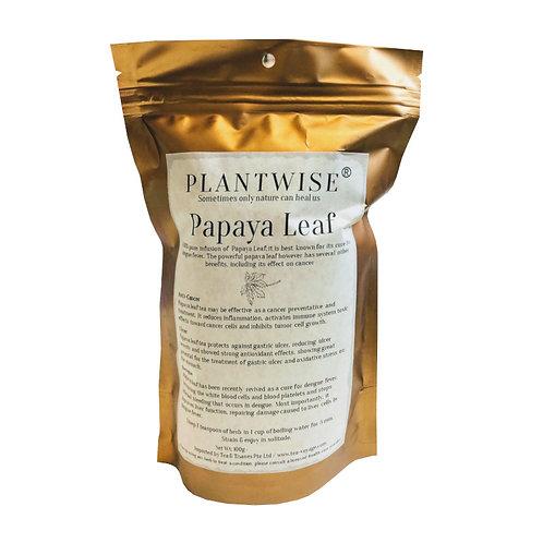 Tea Voyage Plantwise Papaya Leaf ( 2g x 20 Herb Bags)