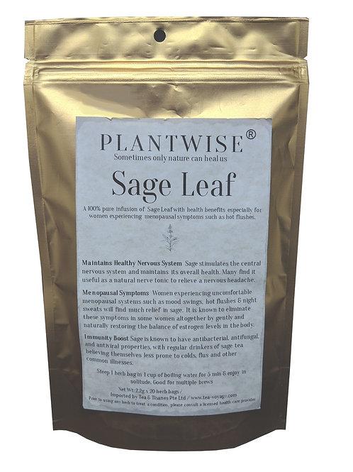 PLANTWISE Sage Leaf (20 Herb Bags)