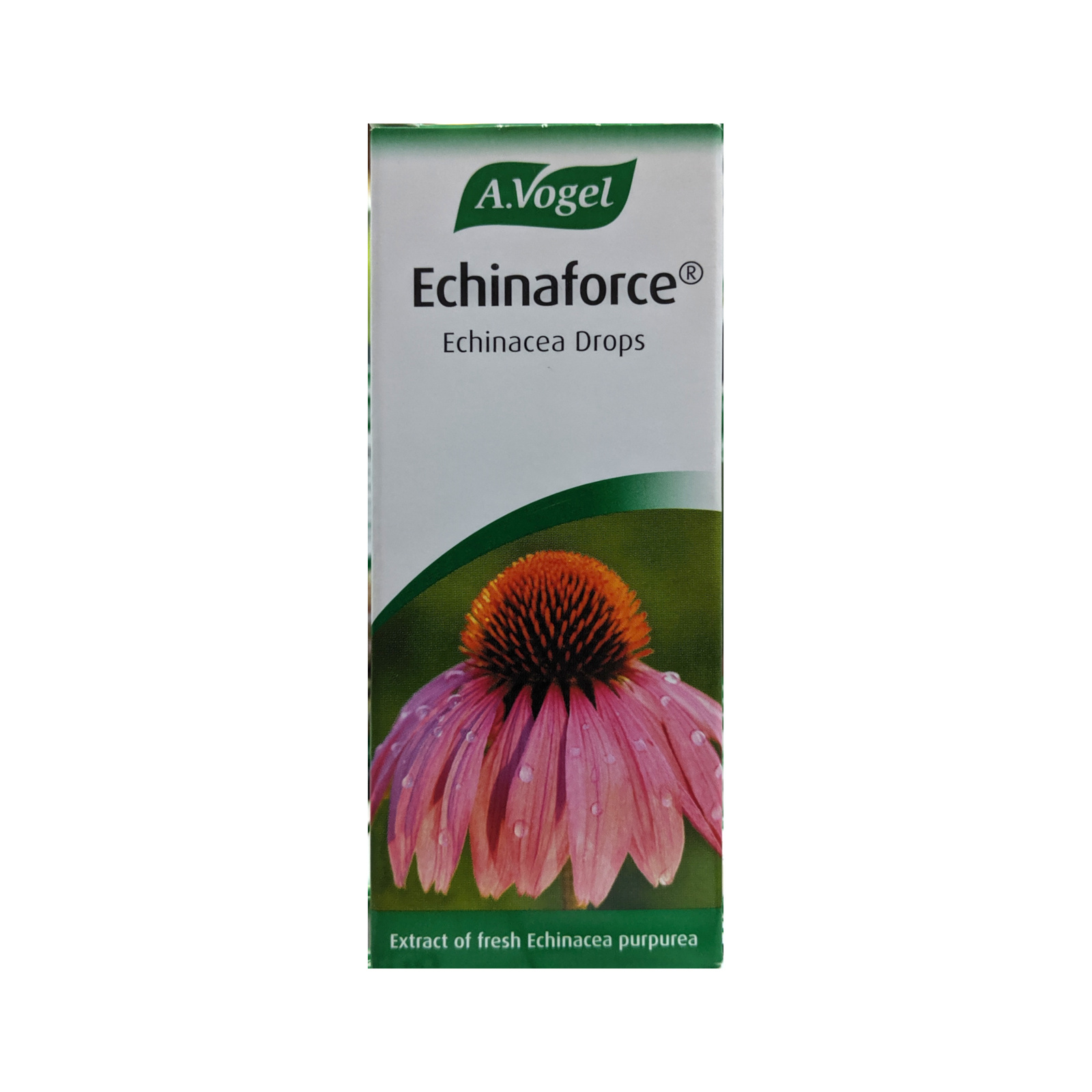 A Vogel Echinaforce Echinacea Drops 50ml