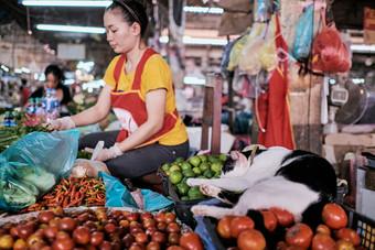 Cats Market, black and white big tomato