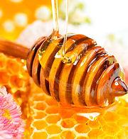 honey-and-the-honeycomb.jpg