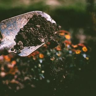 compost1.jpeg