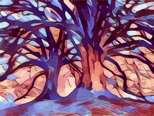 Chapter 3 - The Oak Tree