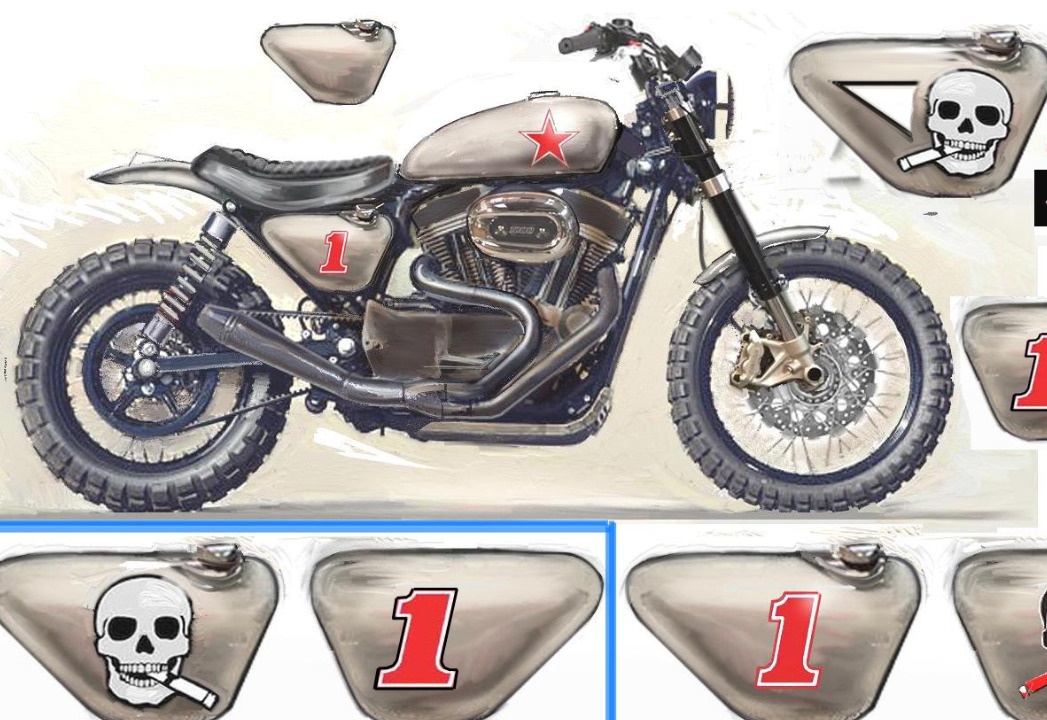 Moto Therapy Design Sportster 1200