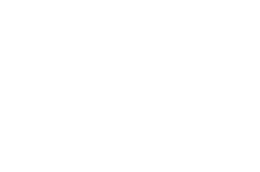 Best Director - Los Angeles Film Awards