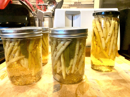 Terri's Spicy Pickled Dill Beans