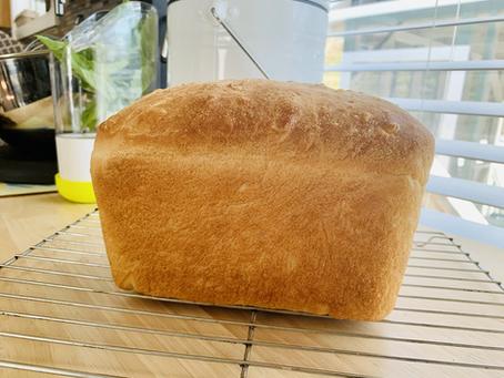 Amazing Bread Machine Dough