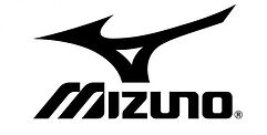 Mizuno-Corp-Logo-500x253.jpg