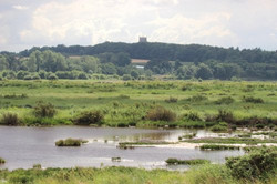 Cley-Marshes,-credit-Barry-Madden-(18)