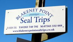 blakeney-point-seal-trips-n
