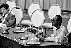 Amb Mamadou Diarra addresses UNSC.jpg