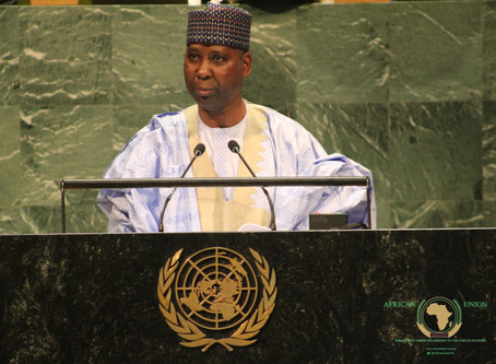 INTERVIEW WITH H.E. Pr. TIJJANI MUHAMMAD-BANDE, PRESIDENT OF THE 74th SESSION OF UN GENERAL ASSEMBLY