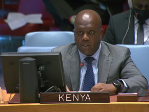 A3+1 STATEMENT ON THE UN STABILIZATION MISSION IN THE DRC