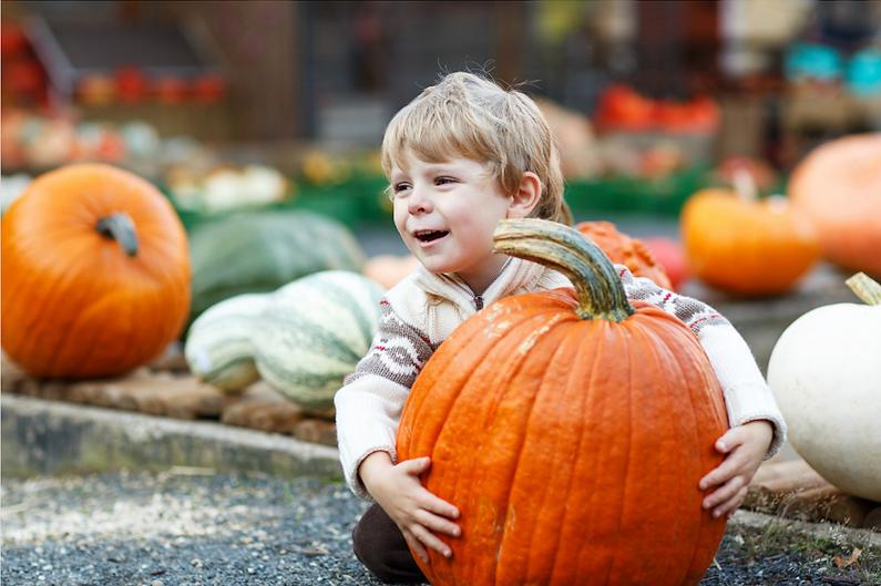 Boy_hugging_pumpkin.png