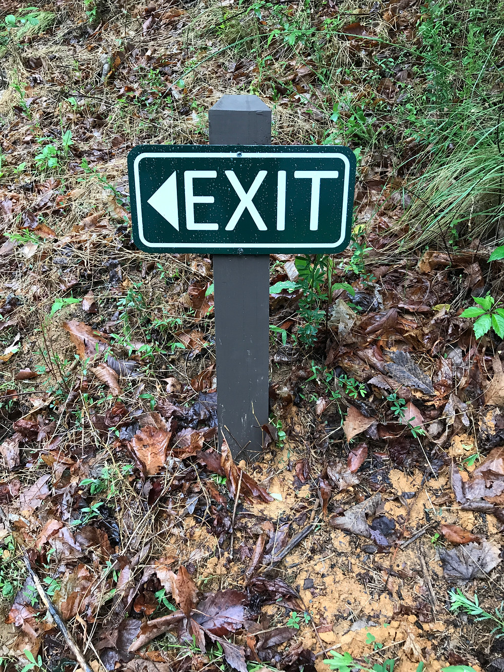 Members of CERT have recently installed new exit signs at most road junctions in Creston. These are designed to expedite safe passage by those using our roads that may not be intimately familiar with them, especially emergency responders like EMTs, ambulance drivers and firemen.