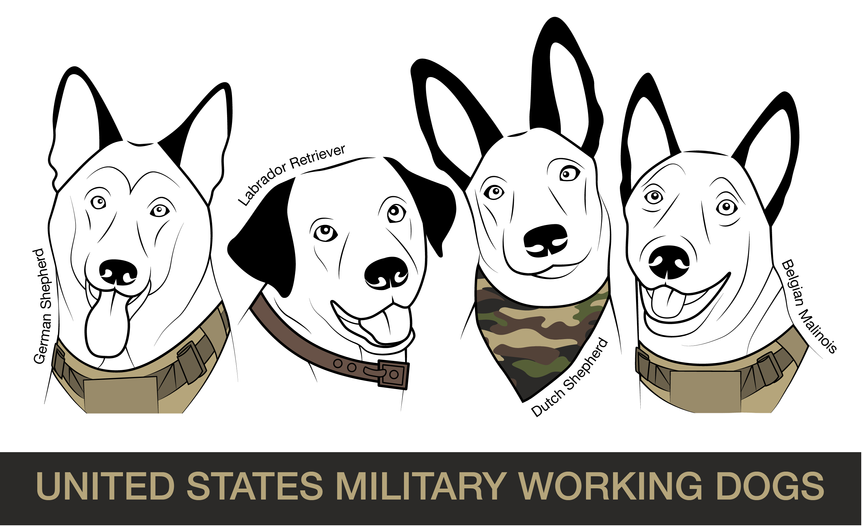 Military Dogs-01.png
