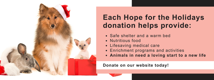 Hope for the Holidays FB Cover Photo.png