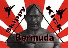 Skippy Kick Bermuda
