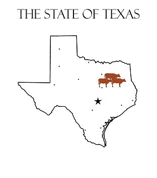 Cow Map.jpg