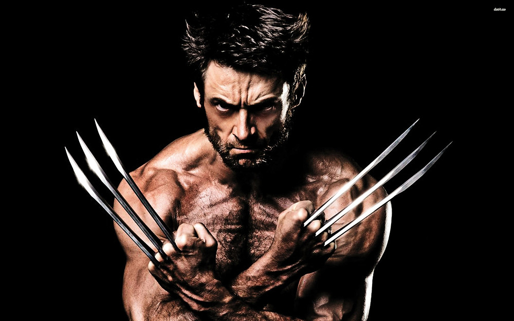 22315-the-wolverine-2880x1800-movie-wallpaper.jpg