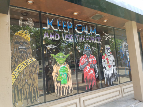 Joliet, IL Star Wars Day 2017