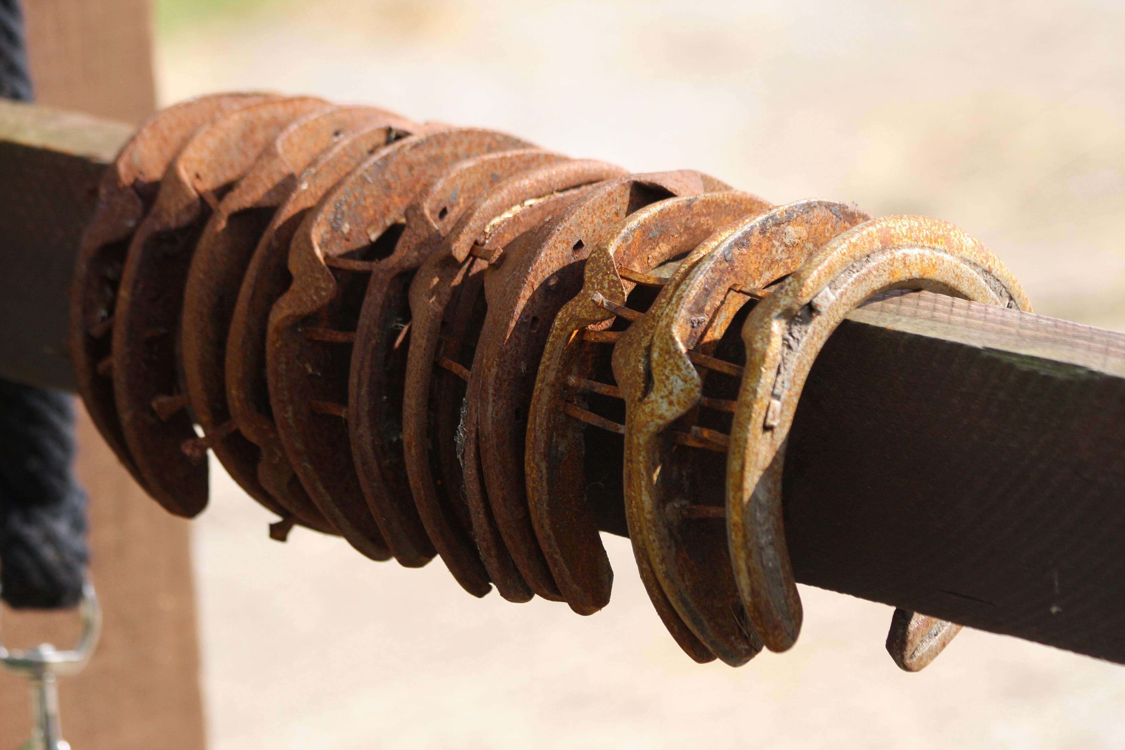 horseshoes-457005