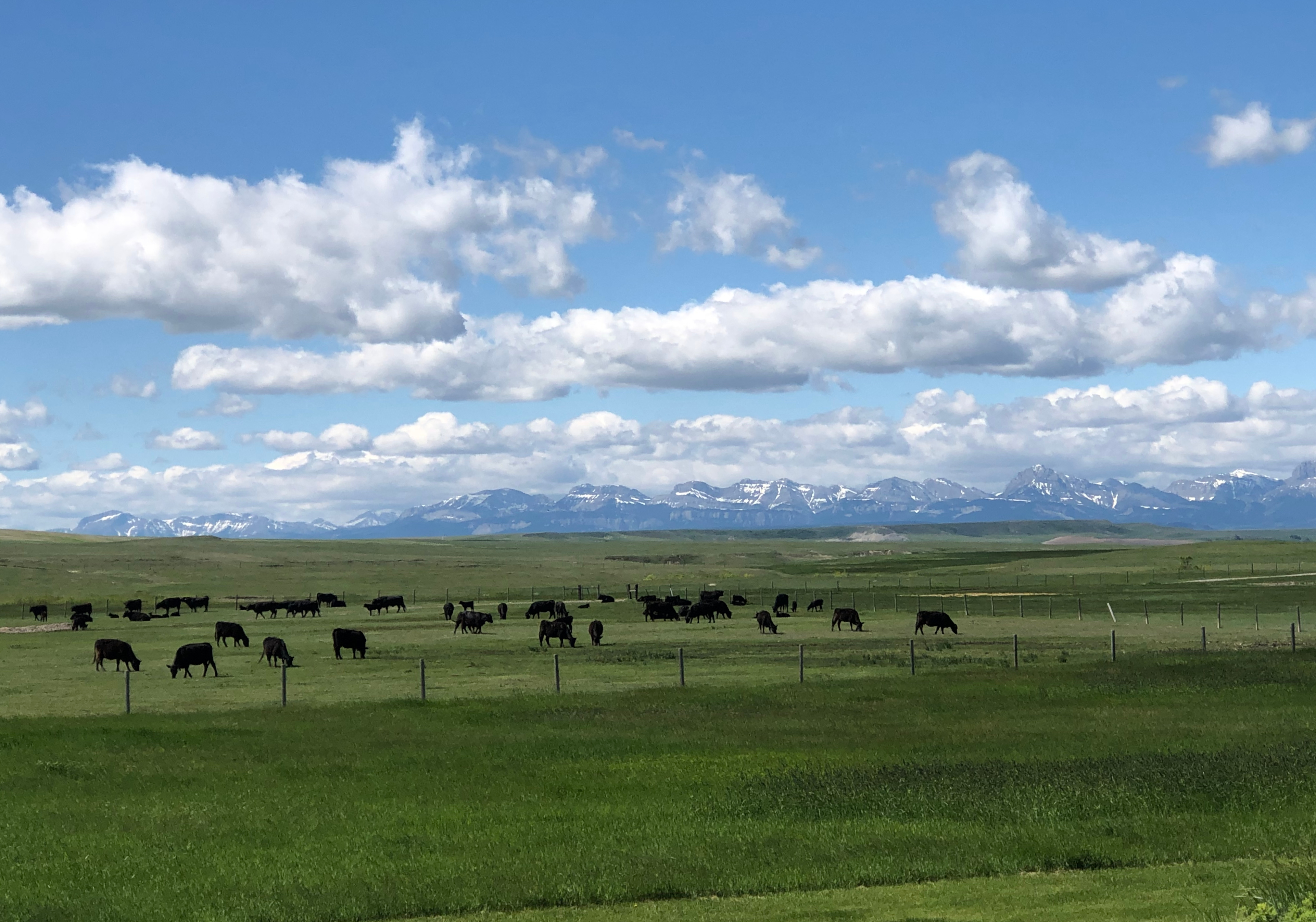 2019 Montanta Ranch Study Tour
