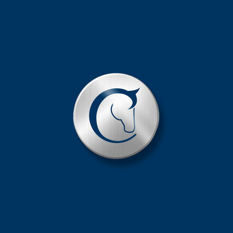 logo-design-bloodstock-new-zealand.jpg