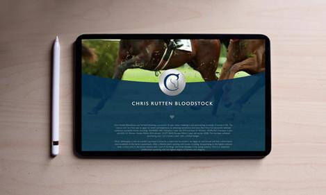 CRbloodstock-webtile.mp4