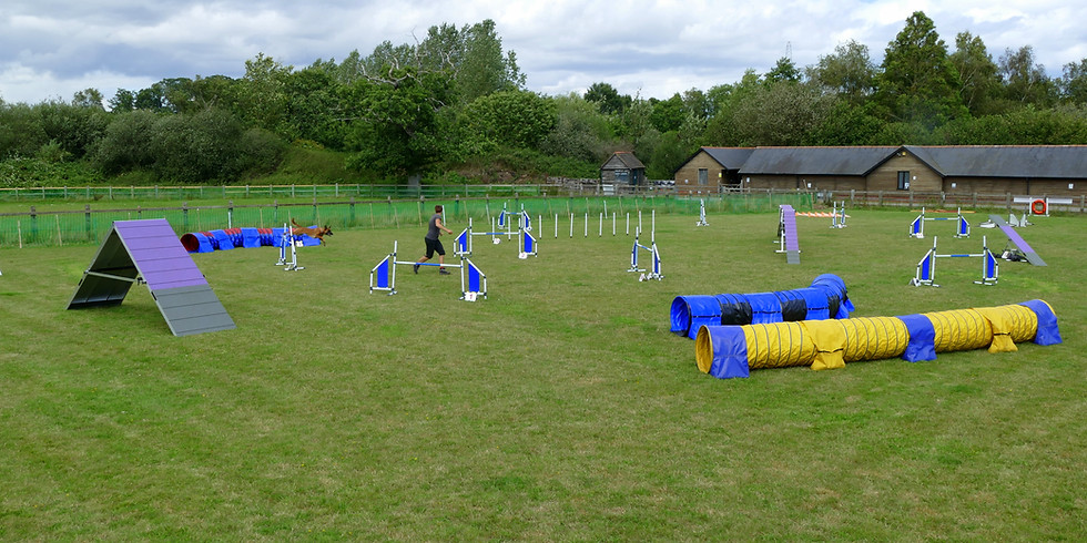 Outdoor Agility Course Running