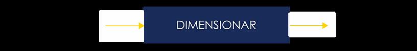 DIMENSIONAR - input y output.png