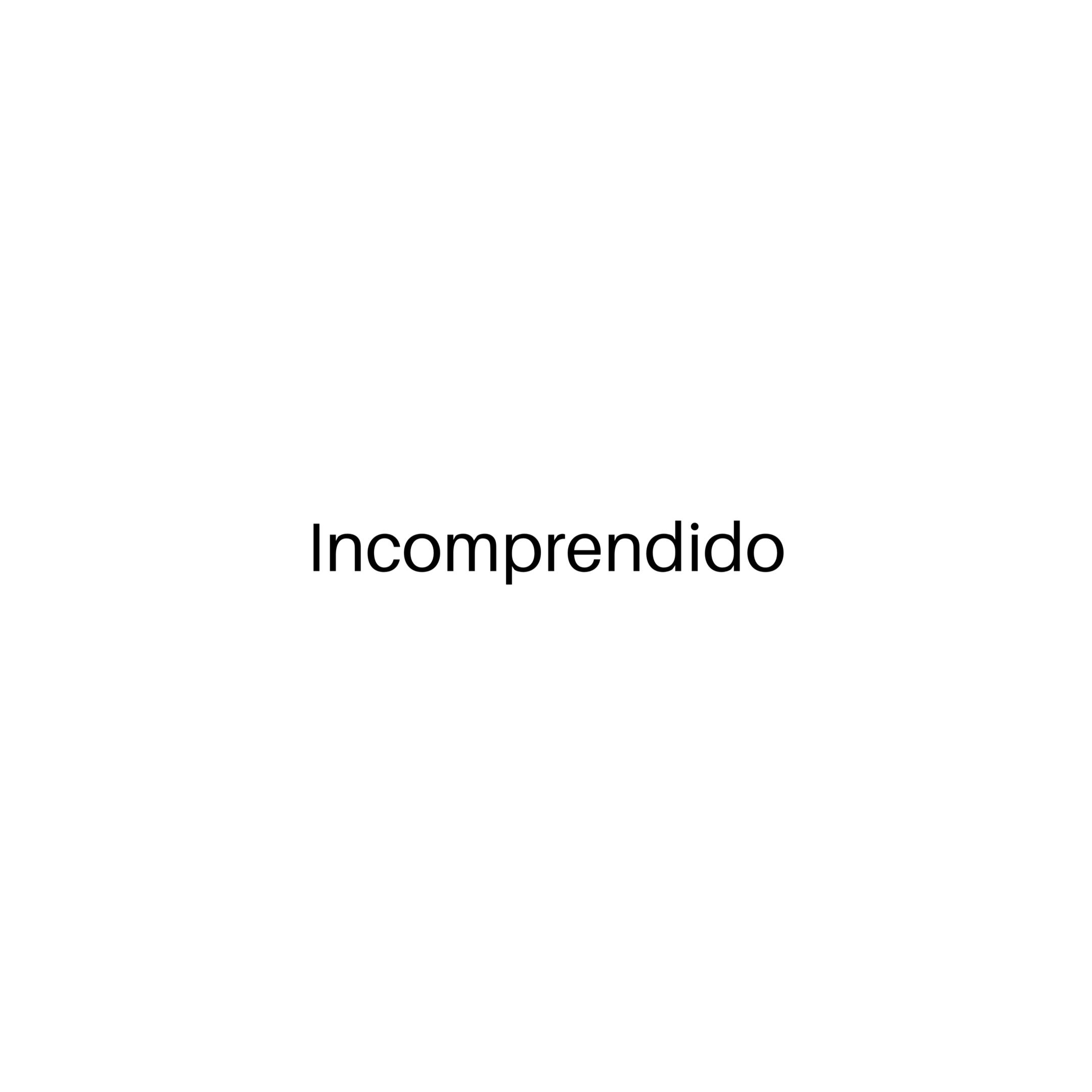 INCOMPRENDIDA