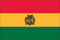 BOLIVIA - VCDI.png