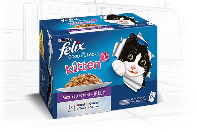 Felix As Good As it Looks Kitten Mixed Selection