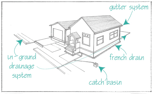 Comprehensive_Drainage_Diagram.jpg