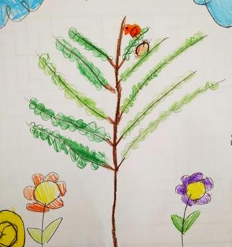 Dia Mundial da Árvore ou da Floresta - (Ano III - 2º P. 2020-2021)