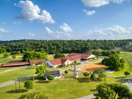 Horses & Real Estate • Twisted Rose Farm