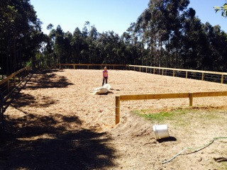 horse arena construction