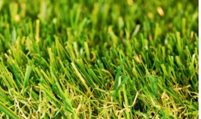 ARTIFICIAL TURF ADELAIDE adelaide
