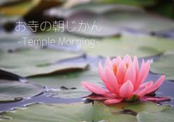 templemorningチラシ