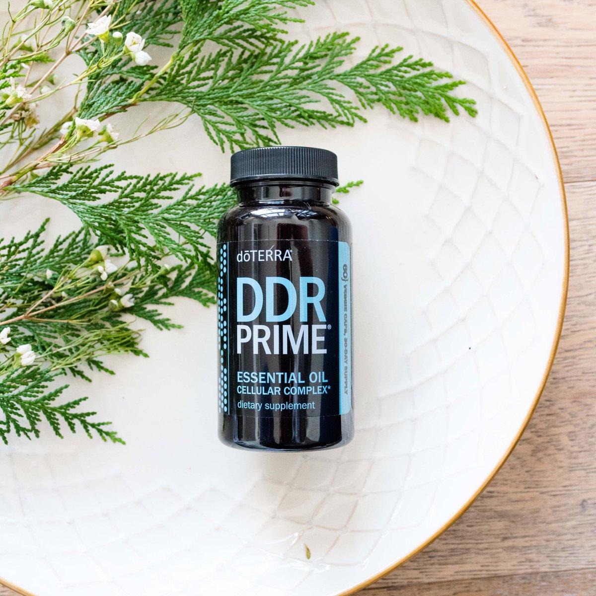 DDR-PRIME