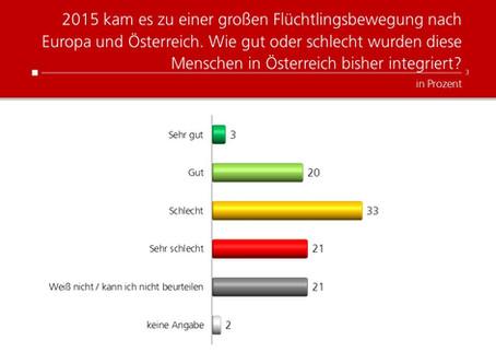 Profil-Umfrage: Integration