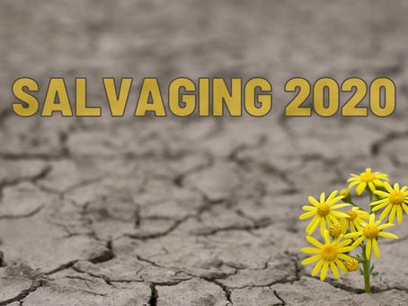 Salvaging 2020