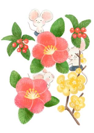 2021 1冬の花