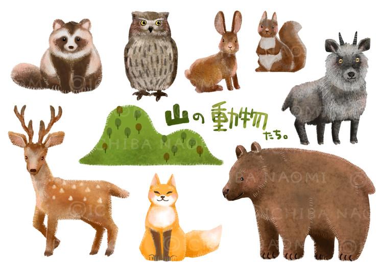 山の生き物たち