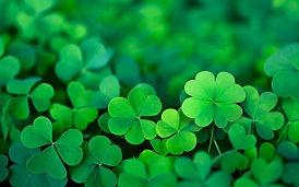 St-Patricks-Day-pop-up.jpg
