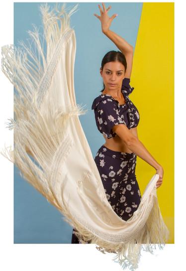011_Flamenco_edited.jpg