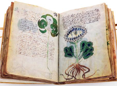 Ergänzungen zum Voynich-Manuskript